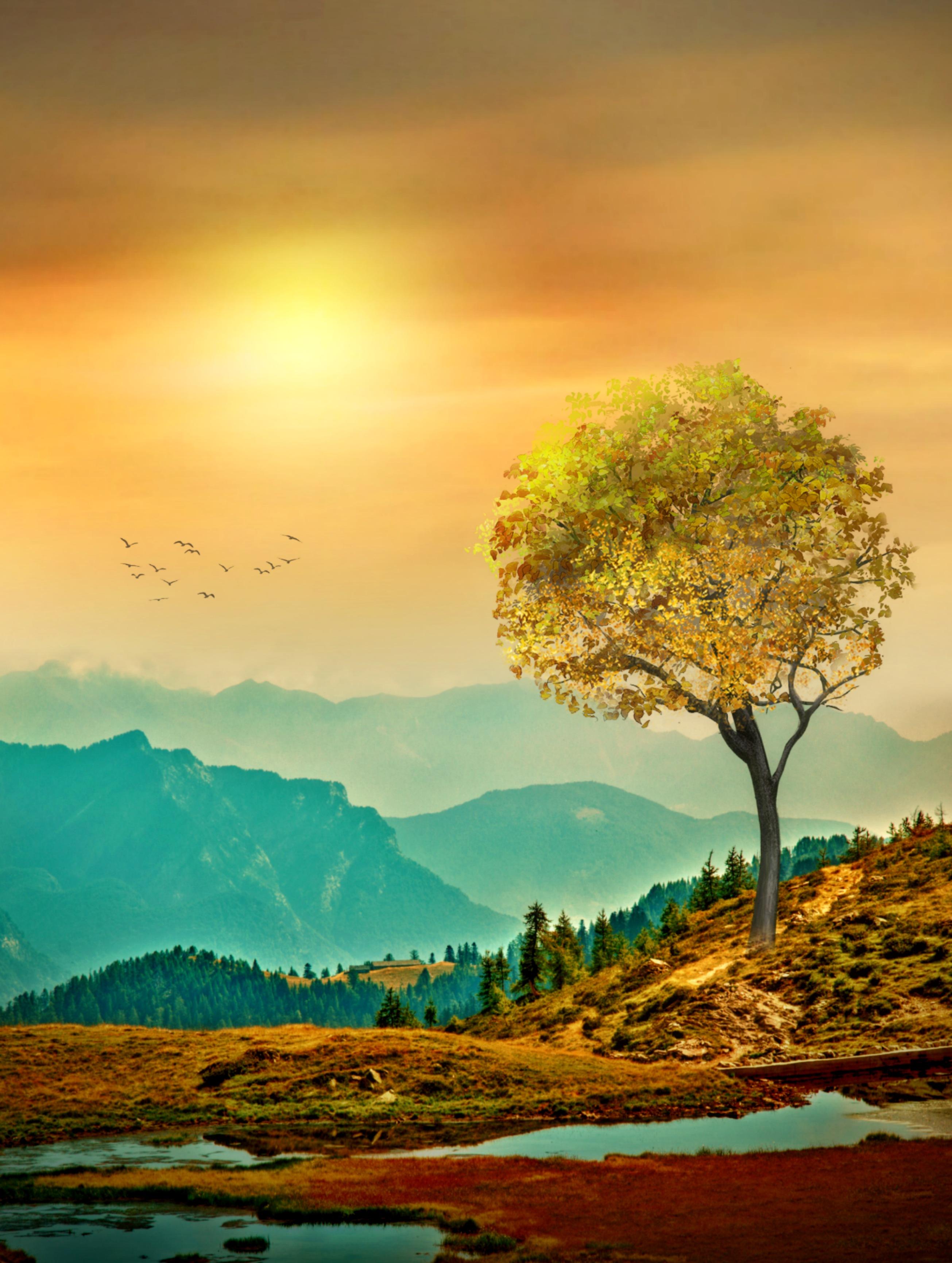 #myedit #madewithpicsart #landscape #colorful @picsart @freetoedit