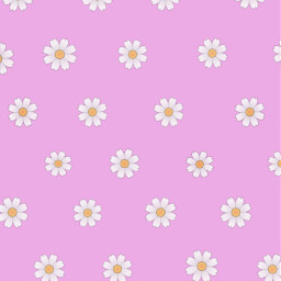 freetoedit flowers daisies spring wallpaper iphone background