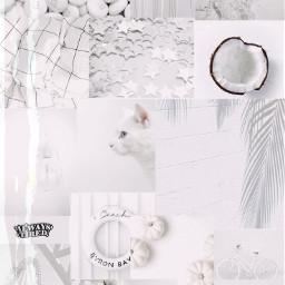 white aesthetic tumblr thanks