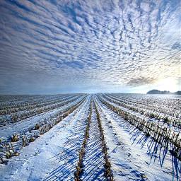 freetoedit remixit nature landscapephotography beauty pretty landscape beautiful follow fanart peace happytaeminday popular popularpage winter snow