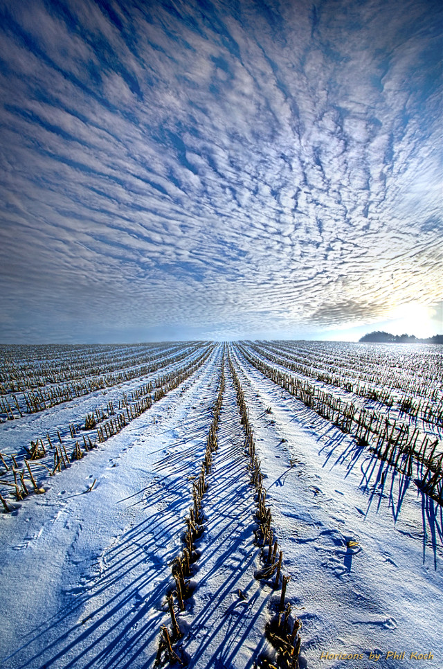 """"""" Prelude """" - Wisconsin Horizons by Phil Koch. Turning natural landscapes into portraits of nature. #freetoedit #remixit #nature #landscapephotography #beauty #pretty #landscape #beautiful #follow #fanart #peace #happytaeminday #popular #popularpage #nature #peace #winter #snow"""