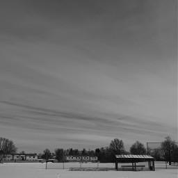 blackandwhite winter snow blackandwhitephotography