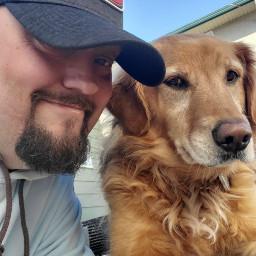 goldenretrievers dogs puppies pets mansbestfriends dog thegoldengirls doglover