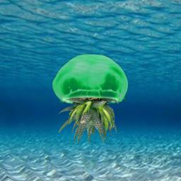 freetoedit jellyfish green ocean sea ircdesignthevase