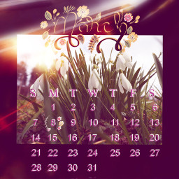month march flowersinthemarch srcmarchcalendar2021 marchcalendar2021