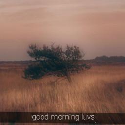 goodmorningluvs freetoedit