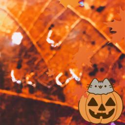 carita hoja calabaza otoño naturaleza natural foto fotografia arboles freetoedit