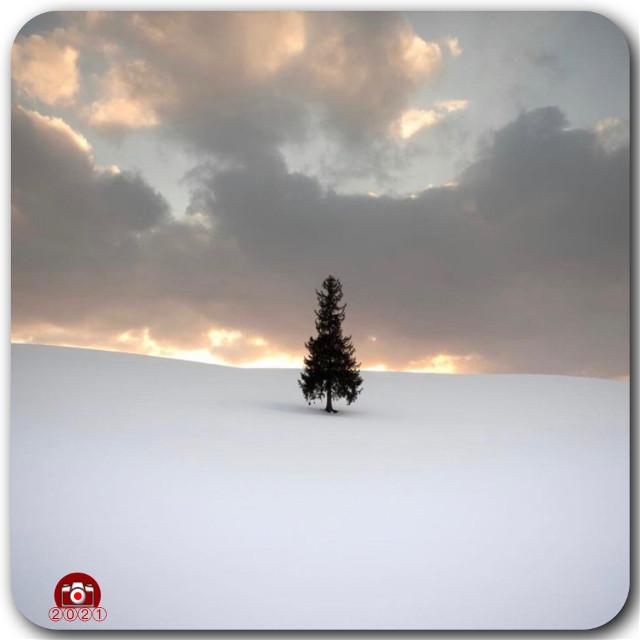 #ig_cameras_united #snow  #icu_japan #freetoedit #clouds