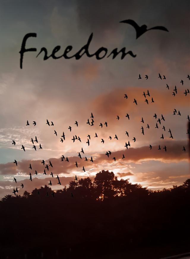 https://youtu.be/eMBJMZfVIWU  #Liberdade #Fotografia #FotografandoPorAi #FotografandoMomentos #Nature #Natureza #PhotoNature #Photography #MyPhoto #Paz #MyPhotoEdited #PoetryArt #PoetryPhoto #Poetry #PôrDoSol #TrilhandoMontanhas #TrilhandoeFotografando #FreeToEdit #MadeWithPicsArt