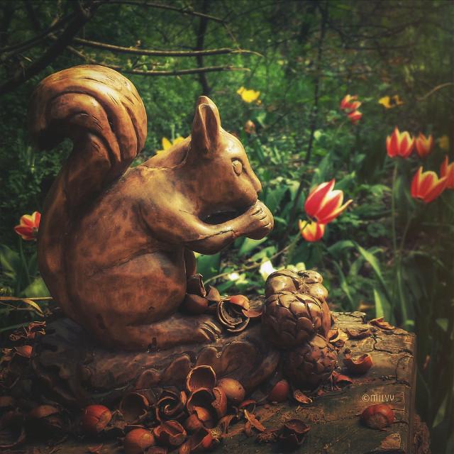 Spring is in the air 🐿🥜🌷     La primavera è nell'aria 🌼🐝🌿   The #fairyforest 🧚🏼♀️ #spring #squirrel #tulips #hazelnuts #acorns #myphoto #shotoniphone #myshot #springcolors #nature #primavera #tulipani #scoiattolo #garden #fairy #green #italy #flowers #woodsculpture #tulipsflower #nature