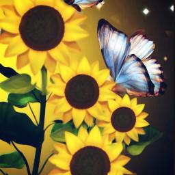 freetoedit brightsunflowers srcbrightsunflowers