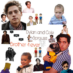 zackandcody italy usa colesprouse dylansprose brothers freetoedit