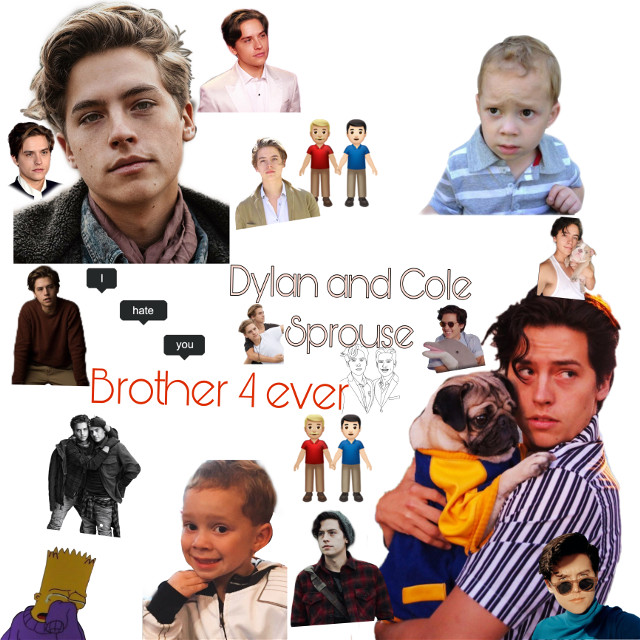 #zackandcody#italy #usa#colesprouse#dylansprose#brothers