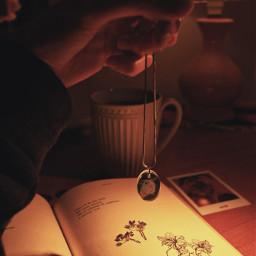 photography photo photooftheday book photostory vintage memories hedgehog tea photograph freetoedit