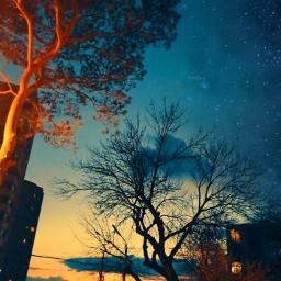 sunsetnight hovyan freetoedit