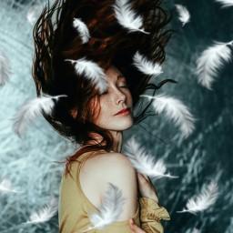 feathers srcwhitefeathers whitefeathers freetoedit