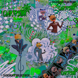 chaton chatnoir miraculousladybug complexedit complexmiraculous chat_noir