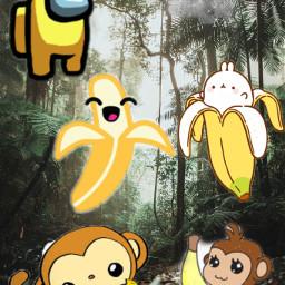 unsplash banana freetoedit