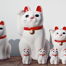 freetoedit japan manekineko neko cats