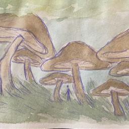 landscape watercolor mushrooms