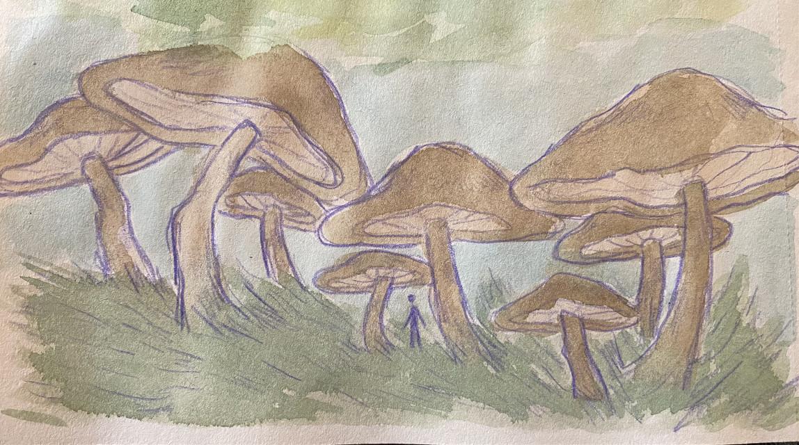 small little landscape painting #landscape #watercolor #mushrooms