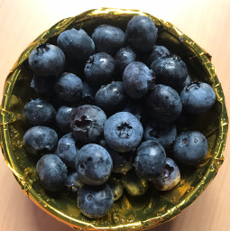 blueberry pcfavoritefruitsandveggies favoritefruitsandveggies