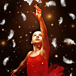 challenge dove whitebird ballerina red srcwhitefeathers freetoedit
