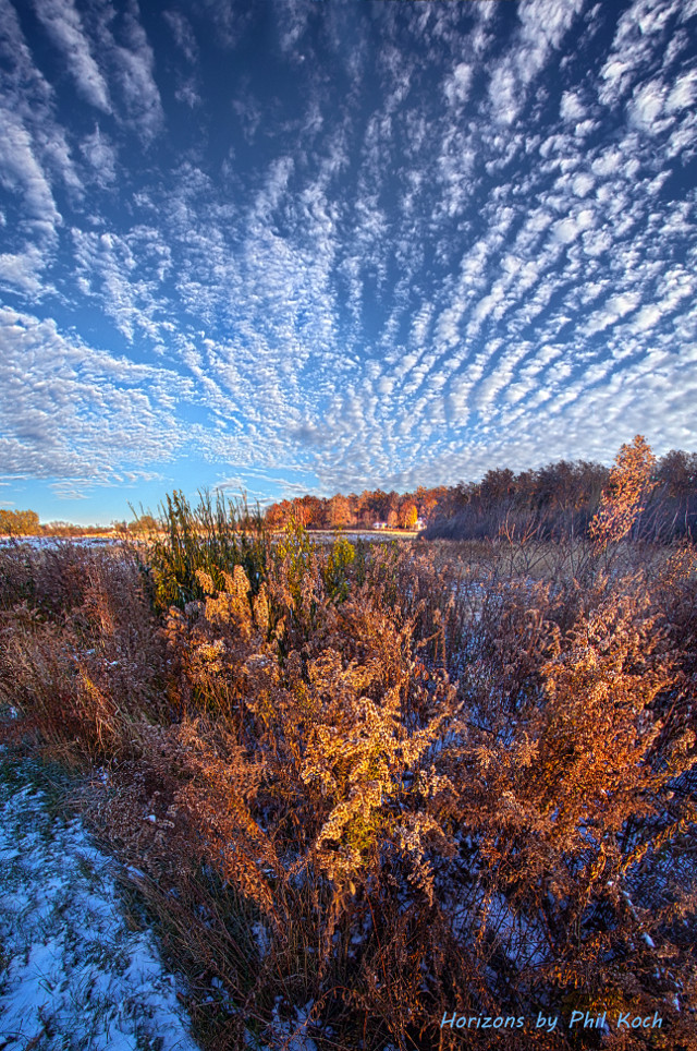 """"""" Life is a Balance """" - Wisconsin Horizons by Phil Koch. Turning natural landscapes into portraits of nature. #freetoedit #remixit #nature #landscapephotography #beauty #pretty #landscape #beautiful #autumn #fall #fallcolors #nature #follow"""