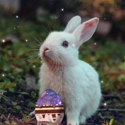 freetoedit easterbunny easter galaxy galaxyegg bunny rabbit sparkle happyeaster easter2021 madewithpicsart picsart