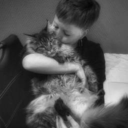 me cat catlove catlover pet katze katzenliebe photography blackandwhite freetoedit