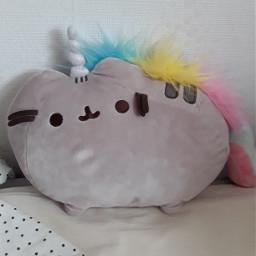 pusheencat unicorn adrianasreallifeeee