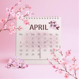 april aprilcalendar pink pinkflowers monday tuesday wednesday thursday friday saturday sunday month 30days freetoedit