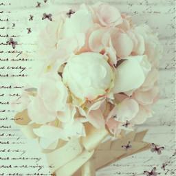 peoniesblush peoniesflowers peonieswhite vintageflowerwithbutterflies bridalbouquet srchandwrittenbackground handwrittenbackground freetoedit