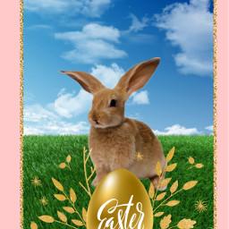 bunny easter tomorrow happy happyeaster cantwait egg freetoedit