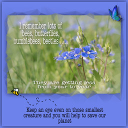 savetheearth savethebees environment careabout freetoedit fcthechangingclimate thechangingclimate