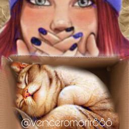 cat surprise love box ircwhatsinthebox freetoedit