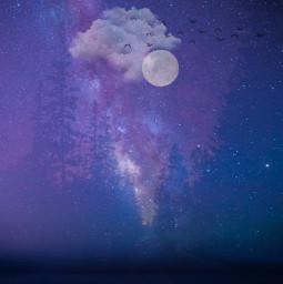 freetoedit night nightsky moon forest birds