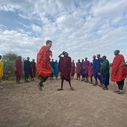 freetoedit maasai jumping tanzania