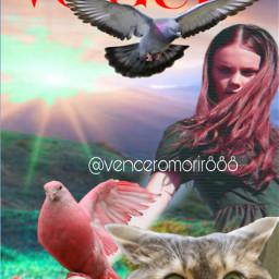 girl birds cat pigeon ircfashionpose fashionpose freetoedit
