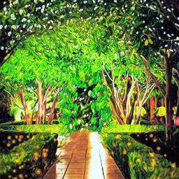 background nightgarden fairylights wedding freetoedit