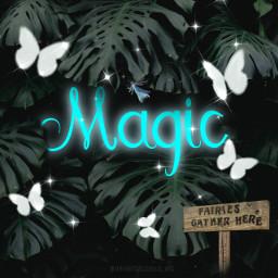 nature beauty magic text playingwithpicsart myimaginationatwork freetoedit unsplash