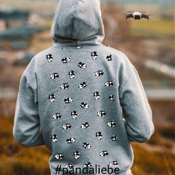 panda pandaliebe hoodie pandaandhoodie unsplash srccutepandas freetoedit
