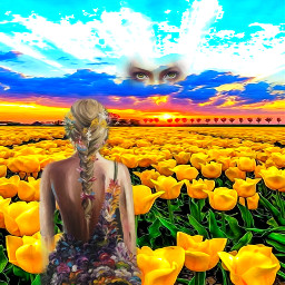 digitalart picsart popart modernart colorful tulipfestival artisticexpression abstractart fanta myedit mydesign remixed freetoedit