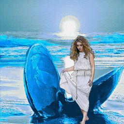 venus clamshell beach ocean freetoedit
