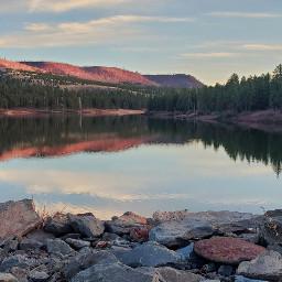 lake reflection pinetrees