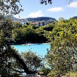 foliage trees sea island naturephotography landscape