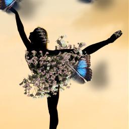 imagination freetoedit ircballerinesilhouette ballerinesilhouette