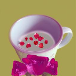 coffeewhithmilkandsugar roses freetoedit