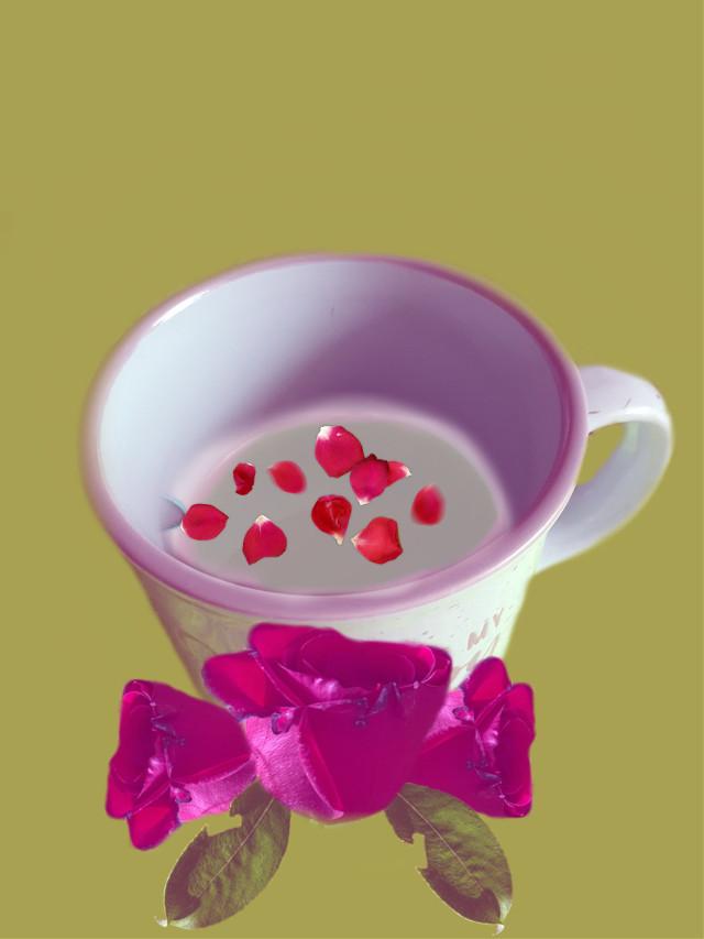 #coffeewhithmilkandsugar #roses 🍃🌹🍃  #freetoedit