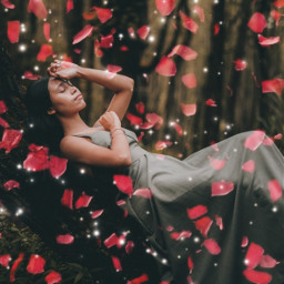 rosepetals women tree forest sparkle remixit freetoedit